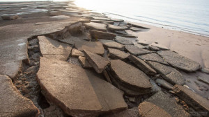 Пляж ракушек Сусан Хой