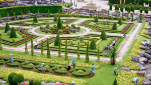 Тропический сад Нонг Нуч (Nong Nooch) в Паттайе