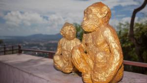 Гора обезьян (Monkey hill) на Пхукете.