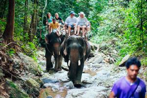 Намыанг Сафари Парк. Катание на слонах