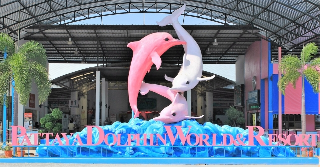 Дельфинарий Dolphin World в Паттайе