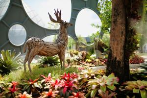 Парк цветов Flower Land Pattaya