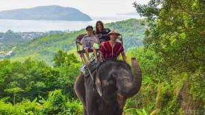 Катание на слонах на Чалонге