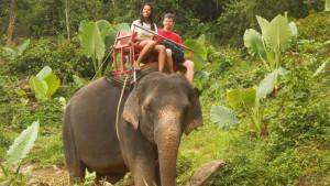 Катание на слонах на пляже Патонг
