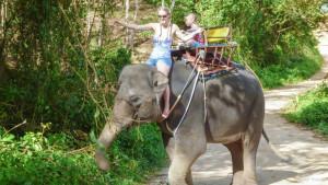 Катание на слонах на Най Харне